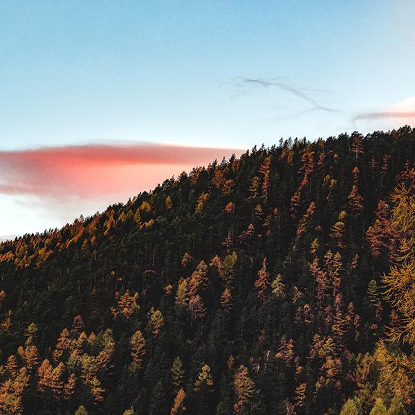 iPapers.co-Apple-iPhone-iPad-Macbook-iMac-wallpaper-nz92-fall-mountain-wood-autumn-nature-wallpaper
