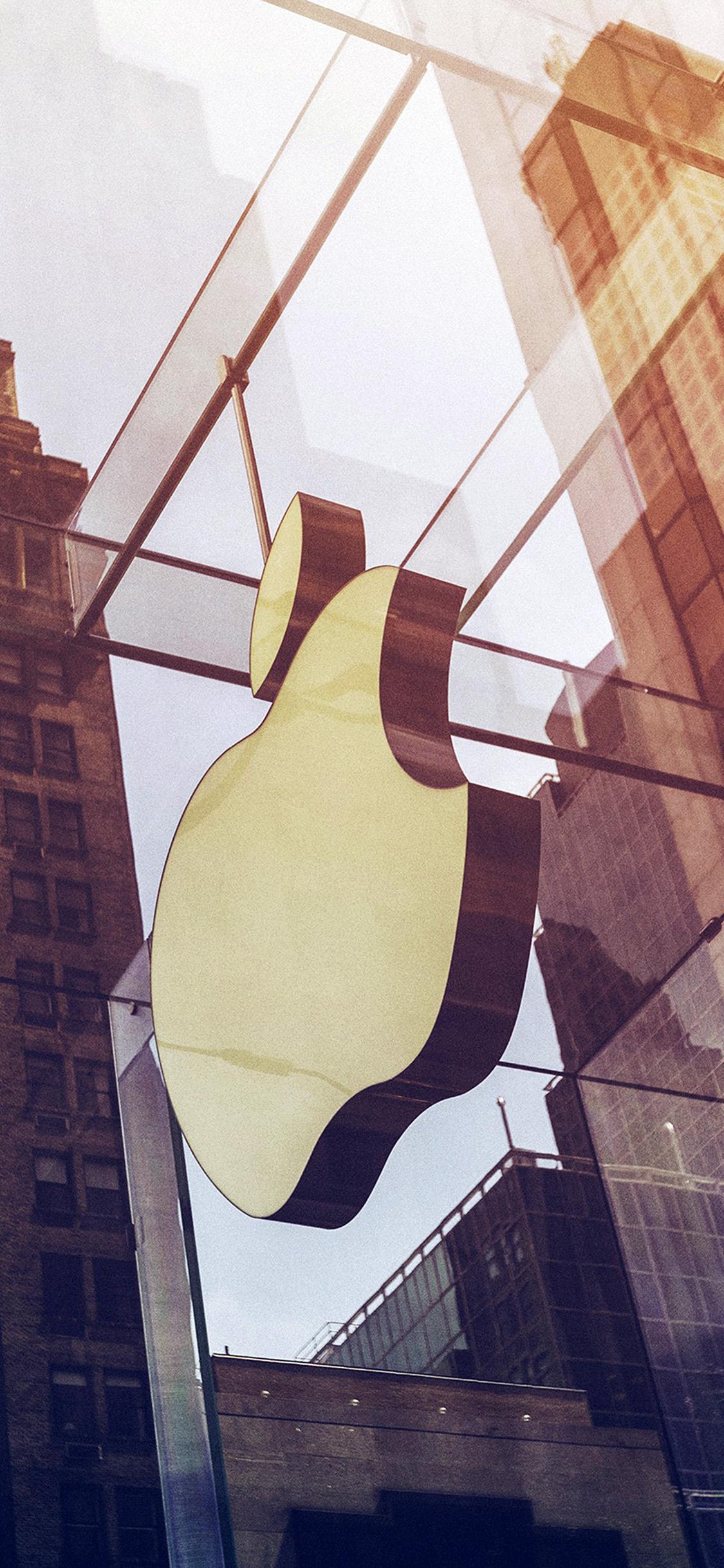 iPhonexpapers.com-Apple-iPhone-wallpaper-oa39-apple-newyork-city-logo-nature-sunny