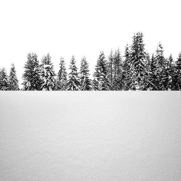 iPapers.co-Apple-iPhone-iPad-Macbook-iMac-wallpaper-oa63-snow-tree-winter-white-nature-wallpaper