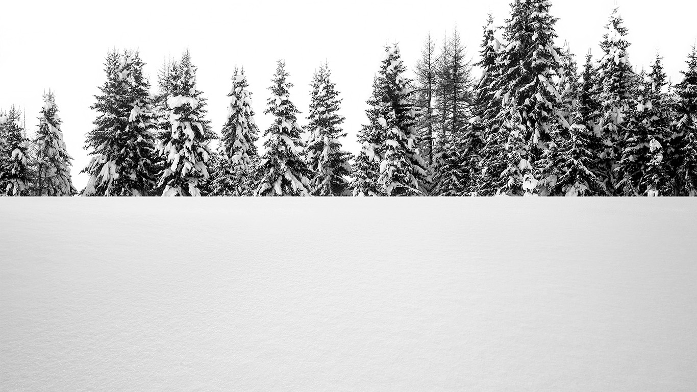 desktop-wallpaper-laptop-mac-macbook-air-oa63-snow-tree-winter-white-nature-wallpaper
