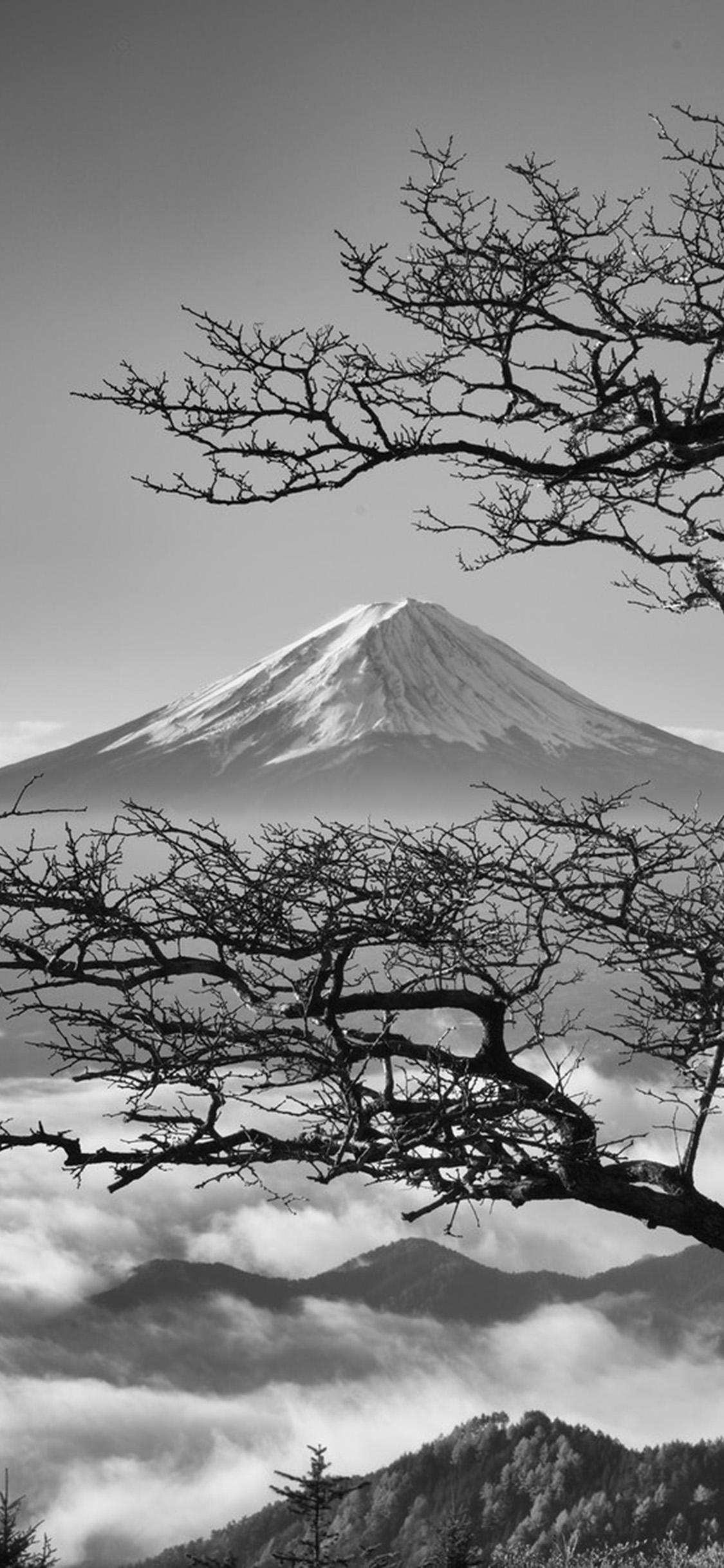 iPhonexpapers.com-Apple-iPhone-wallpaper-oa85-japan-fuji-maountain-bw-nature