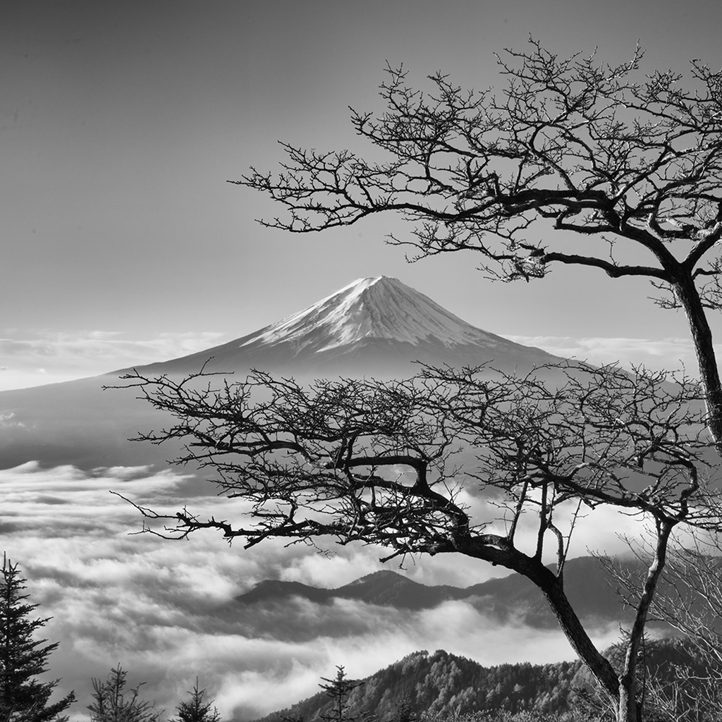 wallpaper-oa85-japan-fuji-maountain-bw-nature-wallpaper