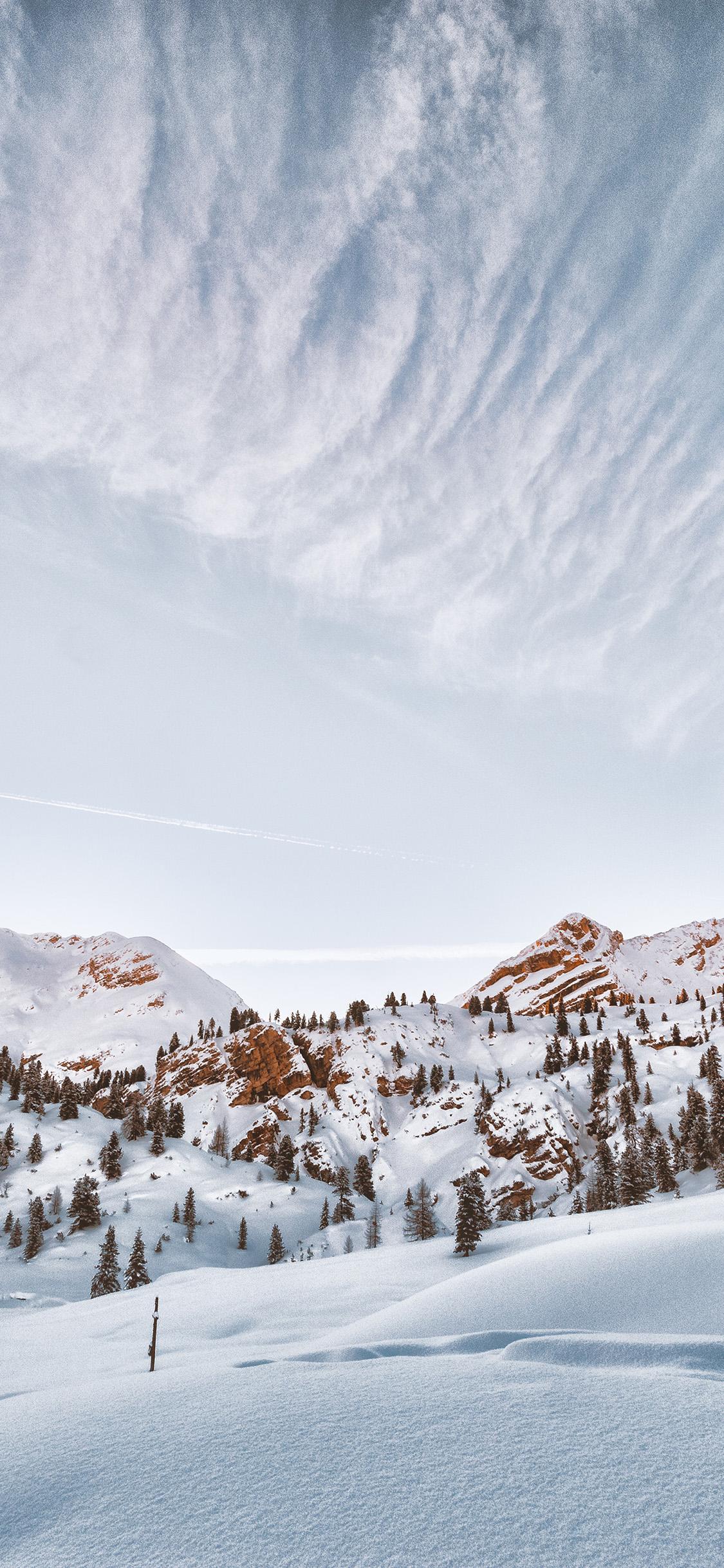 iPhonexpapers.com-Apple-iPhone-wallpaper-oc44-snow-winter-tree-sky-cloud-nature
