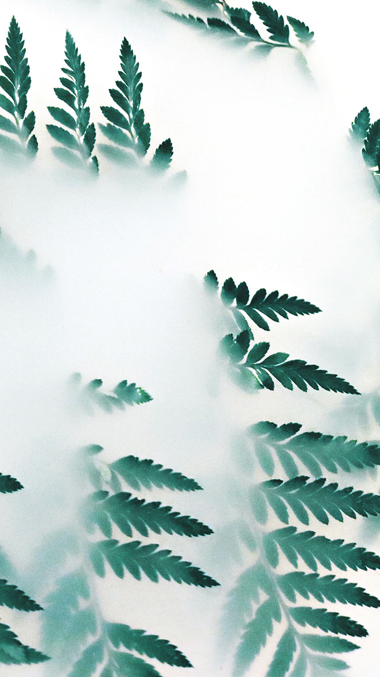 iPhone7papers.com-Apple-iPhone7-iphone7plus-wallpaper-od39-nature-leaf-green-fog