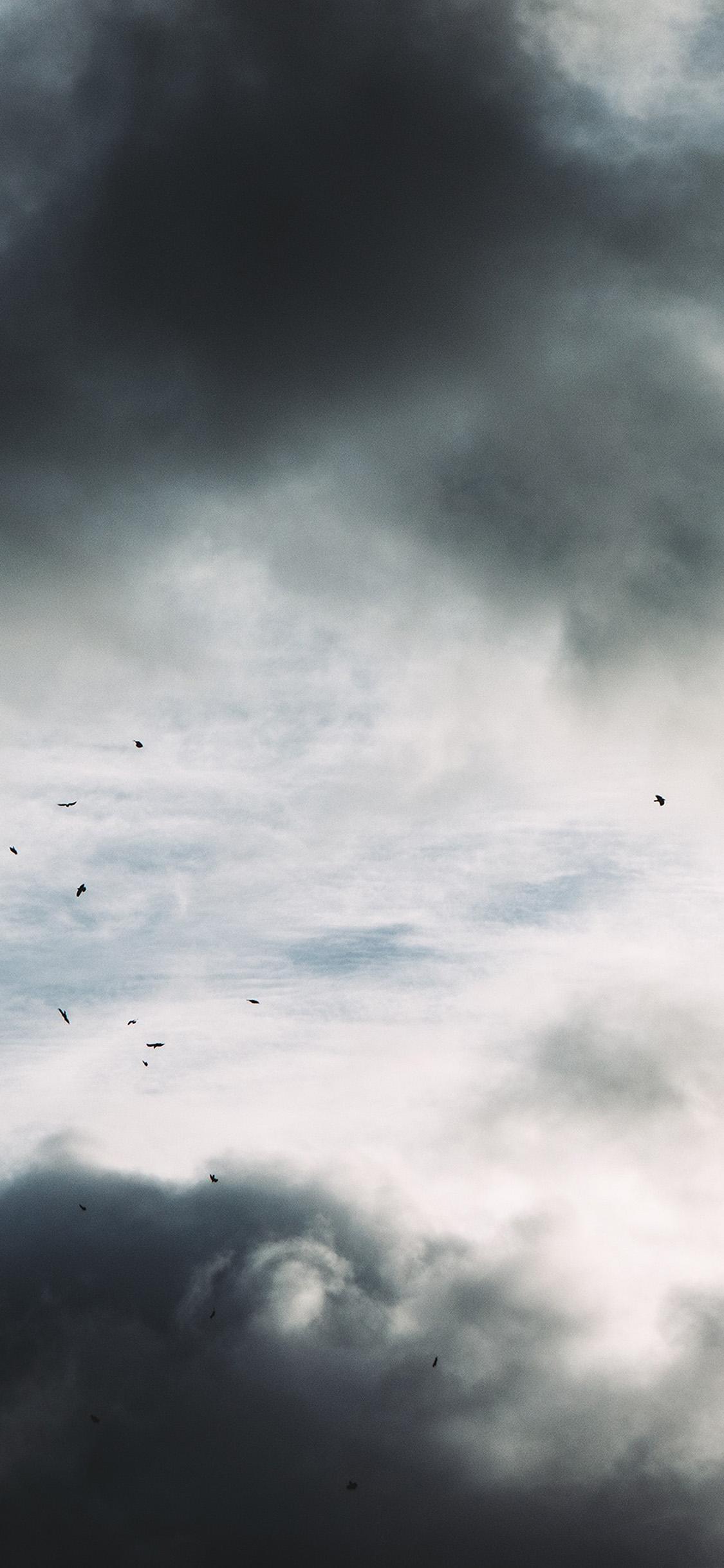 iPhonexpapers.com-Apple-iPhone-wallpaper-oe01-nature-sky-bird-cloud