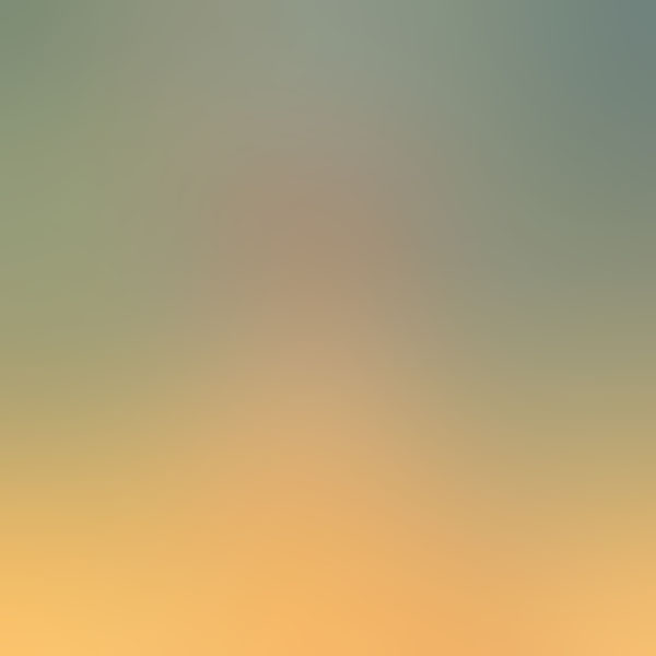 iPapers.co-Apple-iPhone-iPad-Macbook-iMac-wallpaper-sa71-wallpaper-field-blur