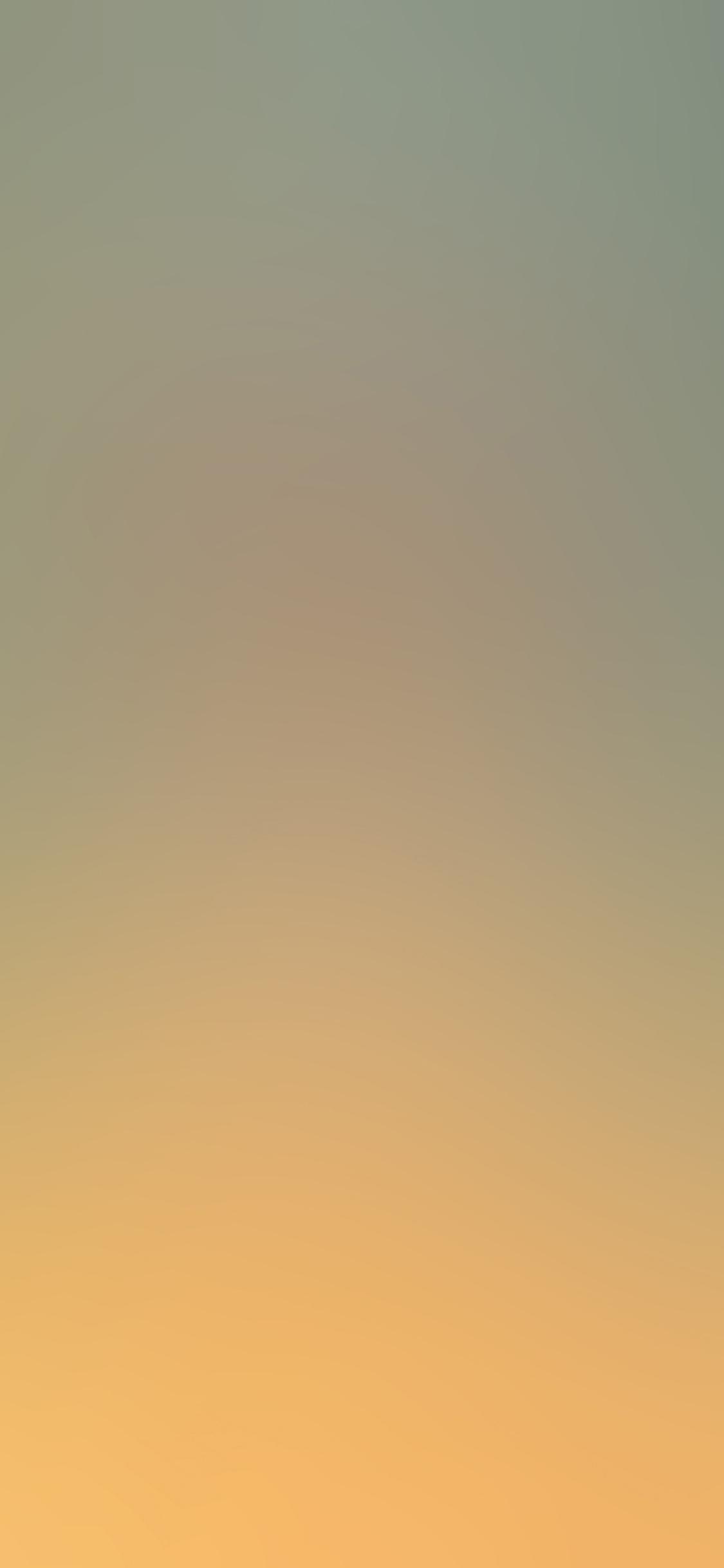 iPhoneXpapers.com-Apple-iPhone-wallpaper-sa71-wallpaper-field-blur