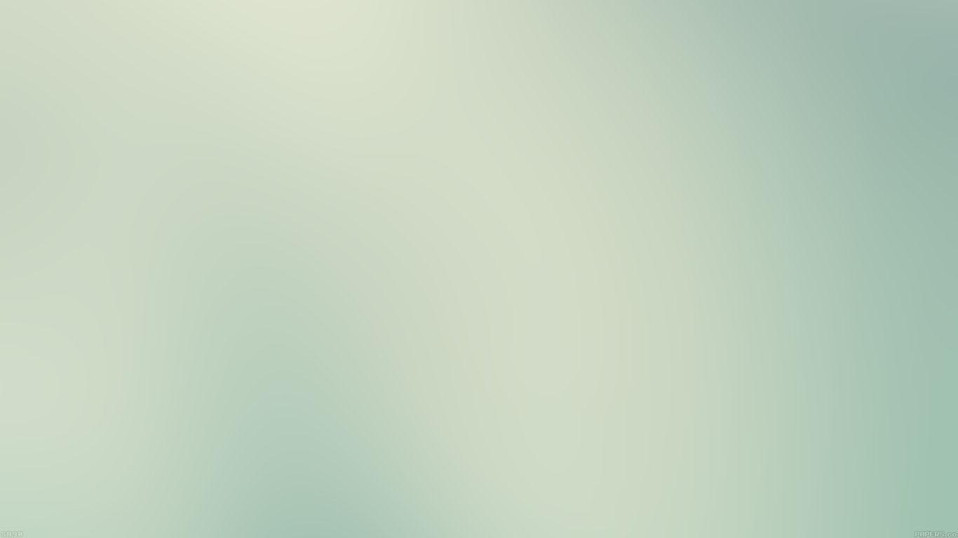 wallpaper-desktop-laptop-mac-macbook-sa90-wallpaper-bamboo-blur-wallpaper