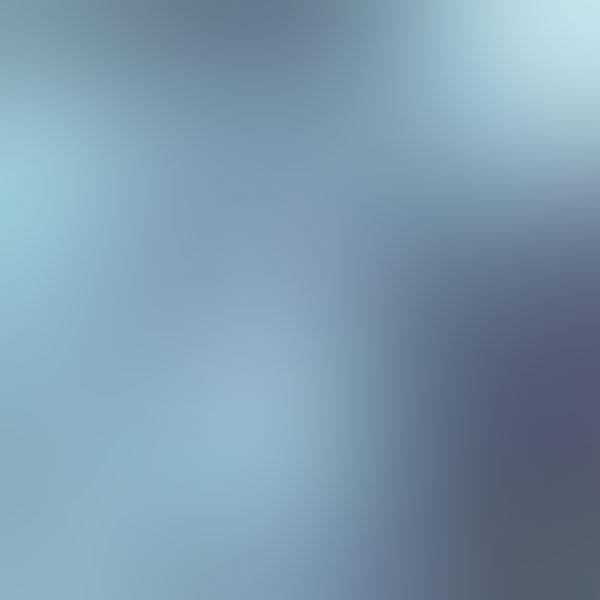 iPapers.co-Apple-iPhone-iPad-Macbook-iMac-wallpaper-sb77-leaf-nature-blue-blur