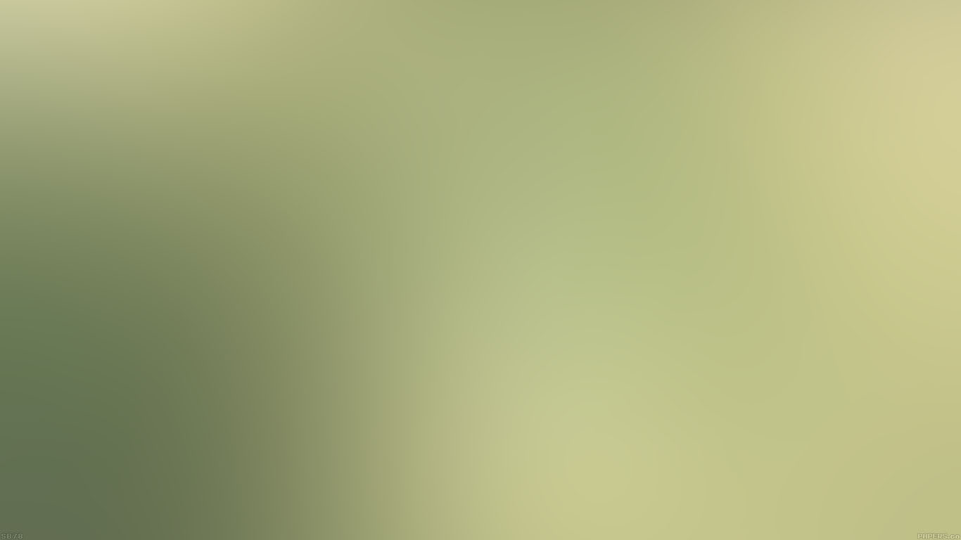 iPapers.co-Apple-iPhone-iPad-Macbook-iMac-wallpaper-sb78-leaf-nature-green-blur
