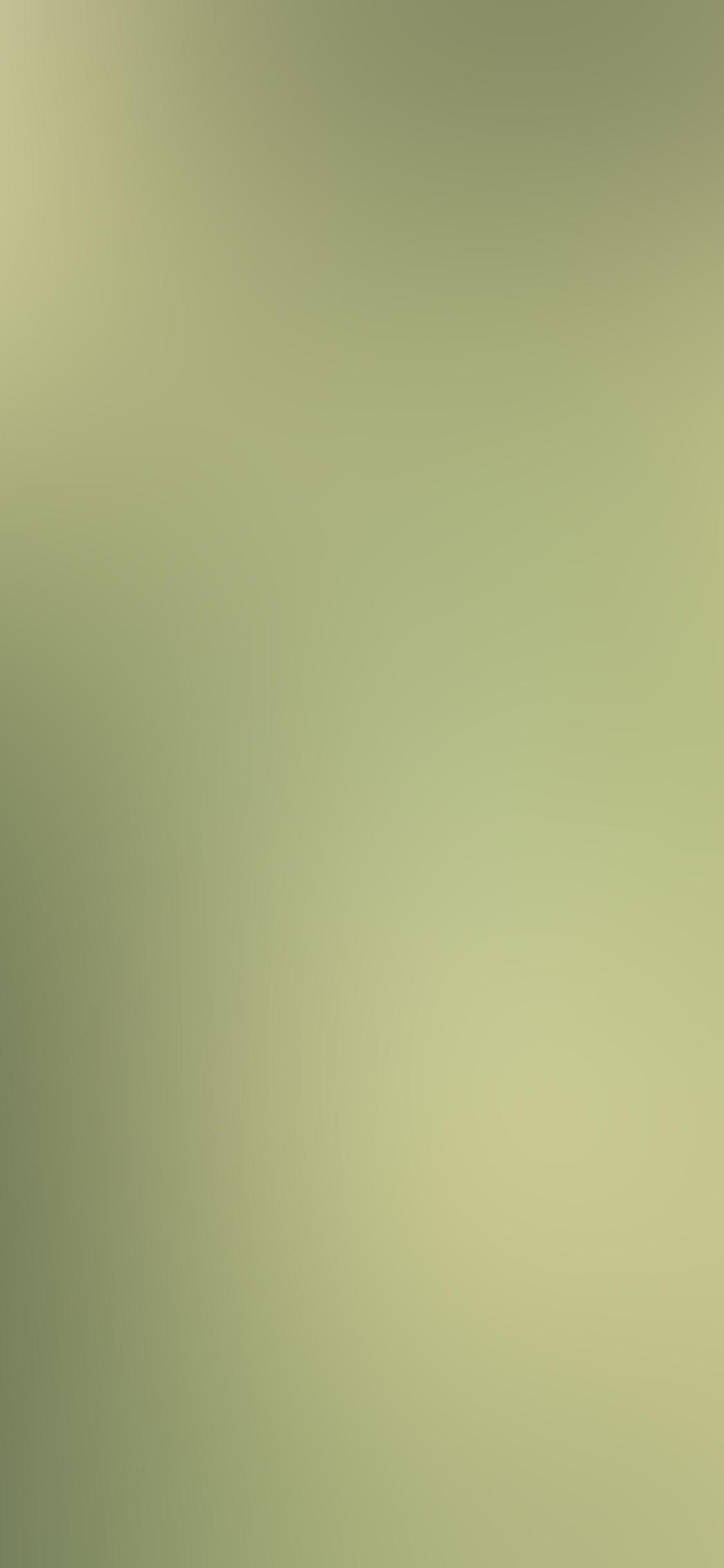 iPhoneXpapers.com-Apple-iPhone-wallpaper-sb78-leaf-nature-green-blur