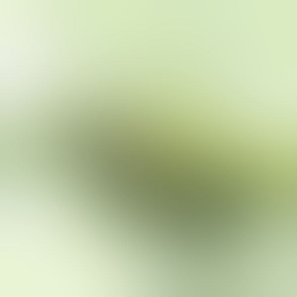 iPapers.co-Apple-iPhone-iPad-Macbook-iMac-wallpaper-sb93-puppy-green-love-blur