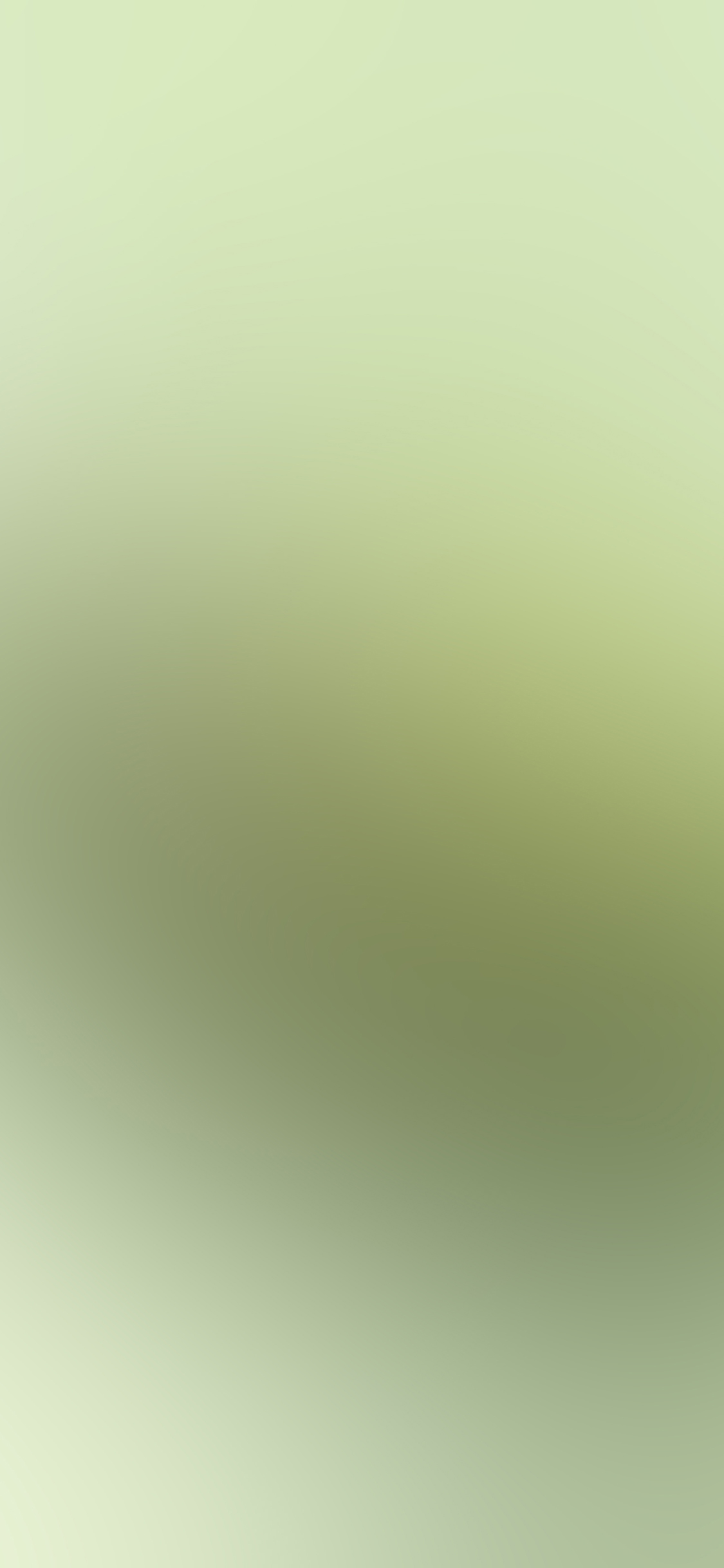 iPhoneXpapers.com-Apple-iPhone-wallpaper-sb93-puppy-green-love-blur