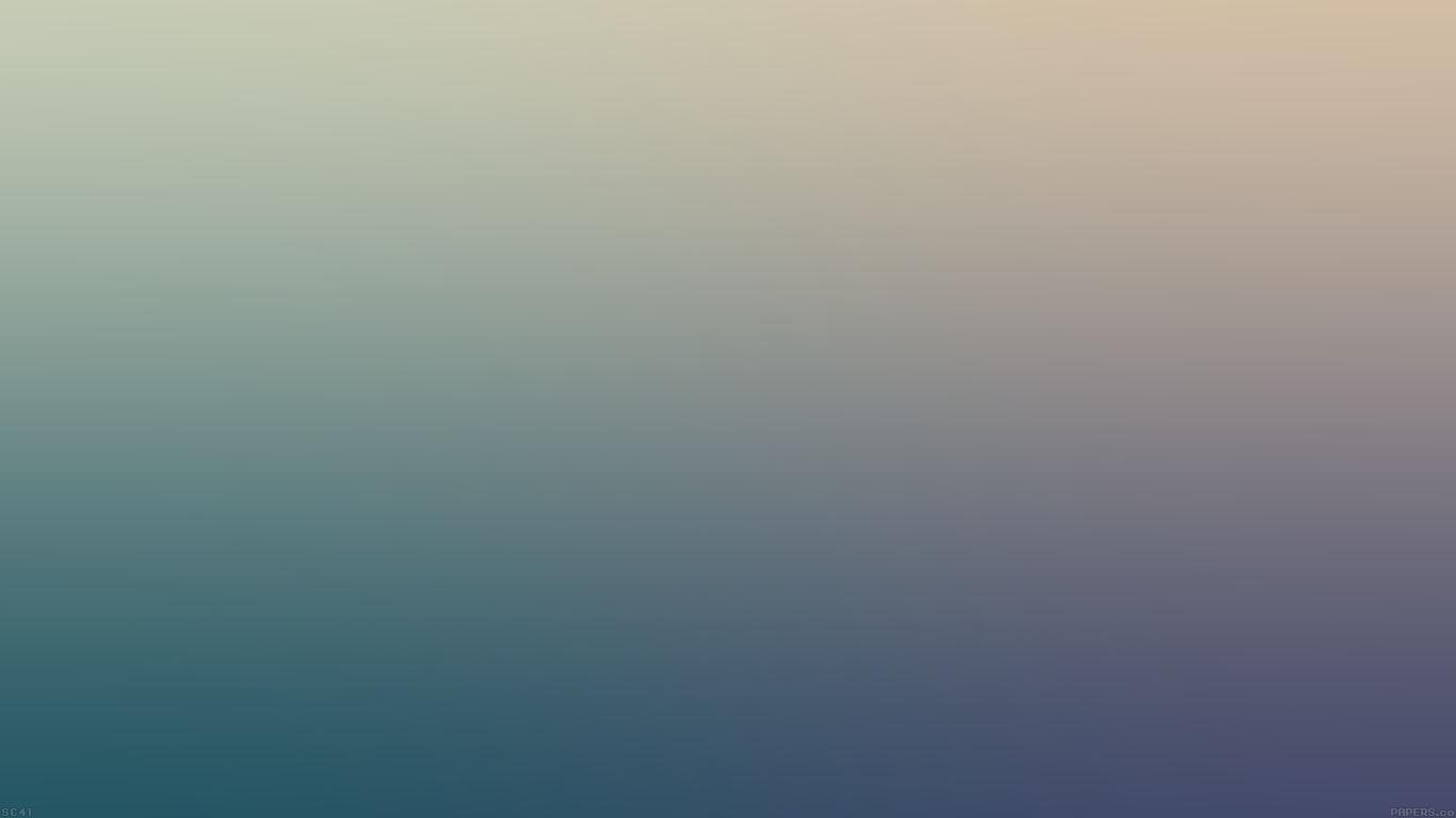 iPapers.co-Apple-iPhone-iPad-Macbook-iMac-wallpaper-sc41-facebook-addict-blur-wallpaper
