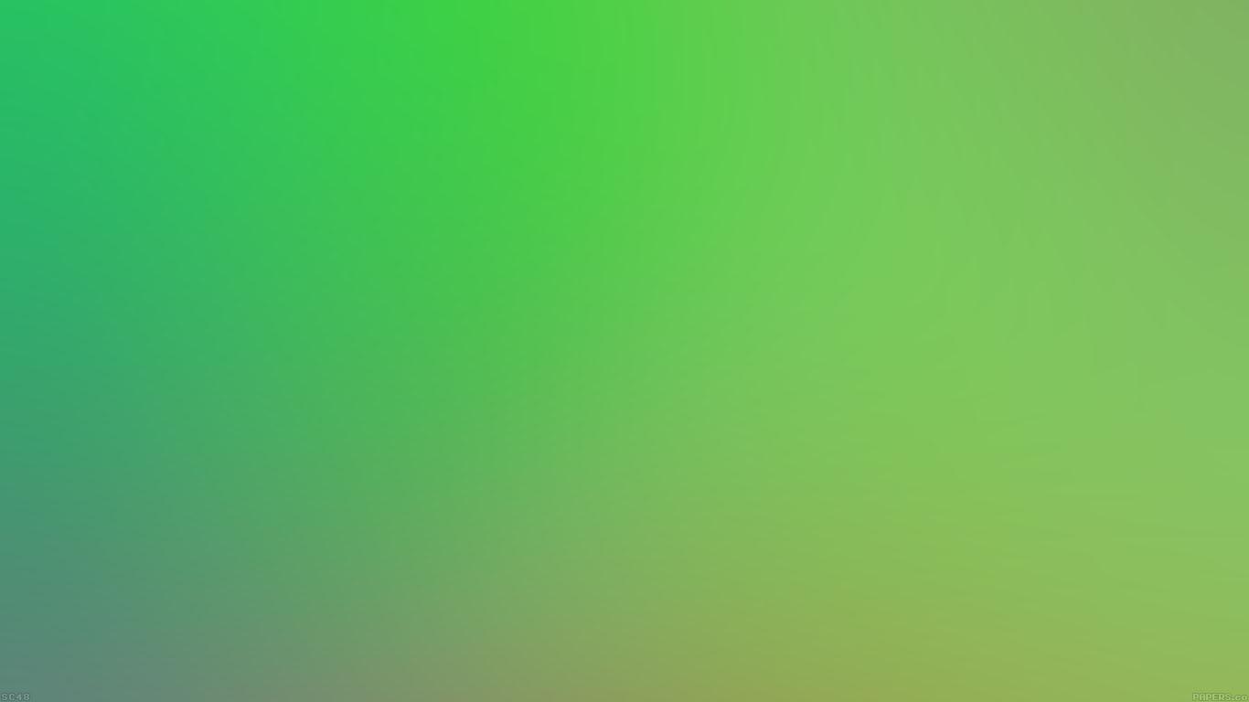 iPapers.co-Apple-iPhone-iPad-Macbook-iMac-wallpaper-sc48-rotten-green-apple-blur-wallpaper