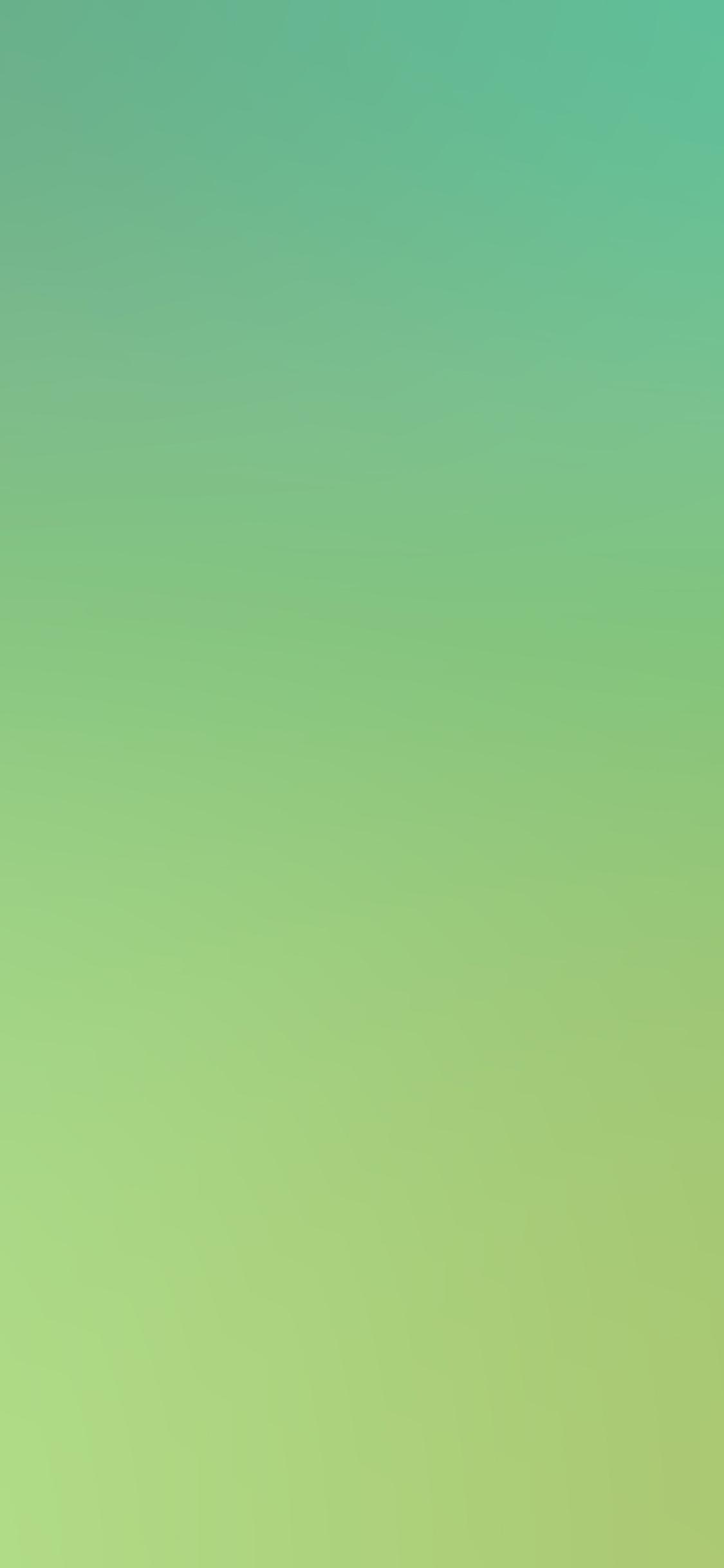 iPhoneXpapers.com-Apple-iPhone-wallpaper-sc55-raid-earthblends-multibug-killer-blur