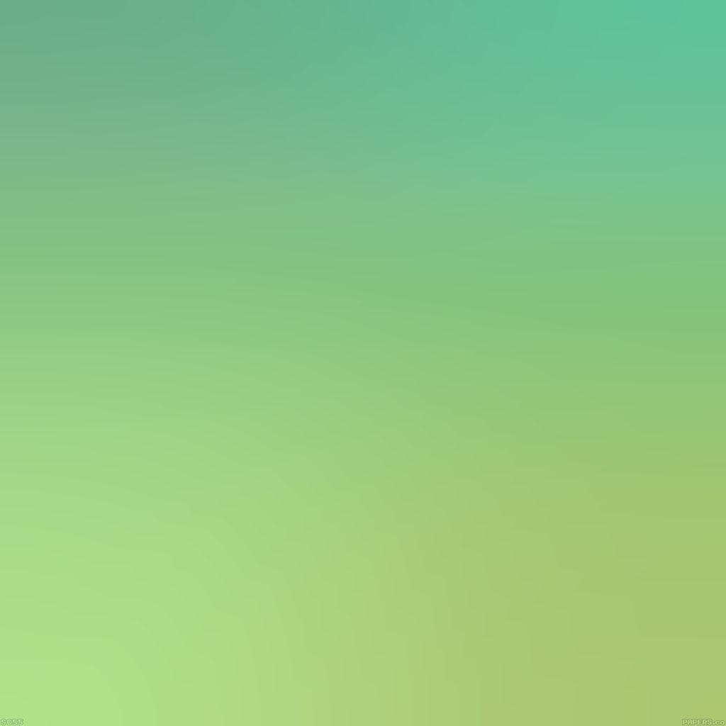 android-wallpaper-sc55-raid-earthblends-multibug-killer-blur-wallpaper