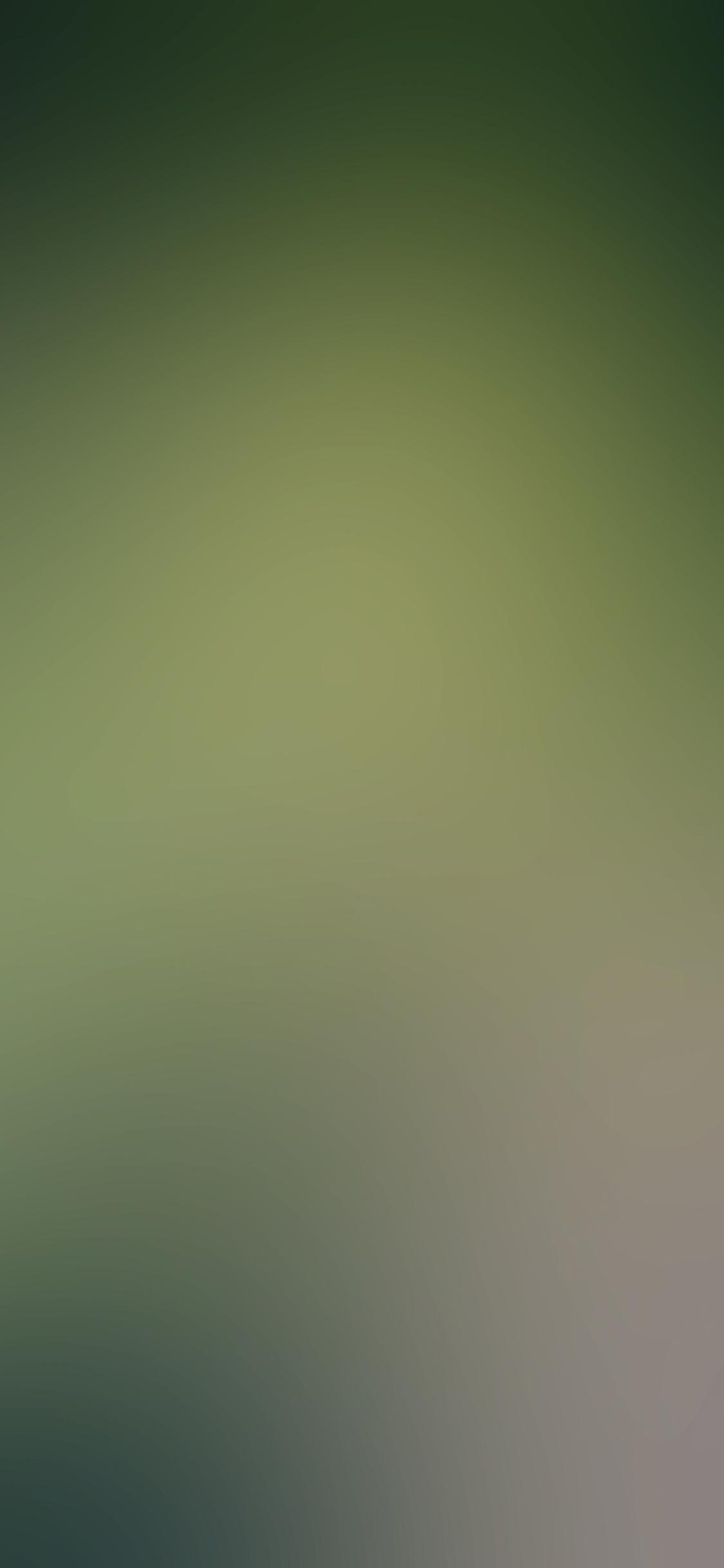 iPhoneXpapers.com-Apple-iPhone-wallpaper-sc72-green-planet-wood-blur