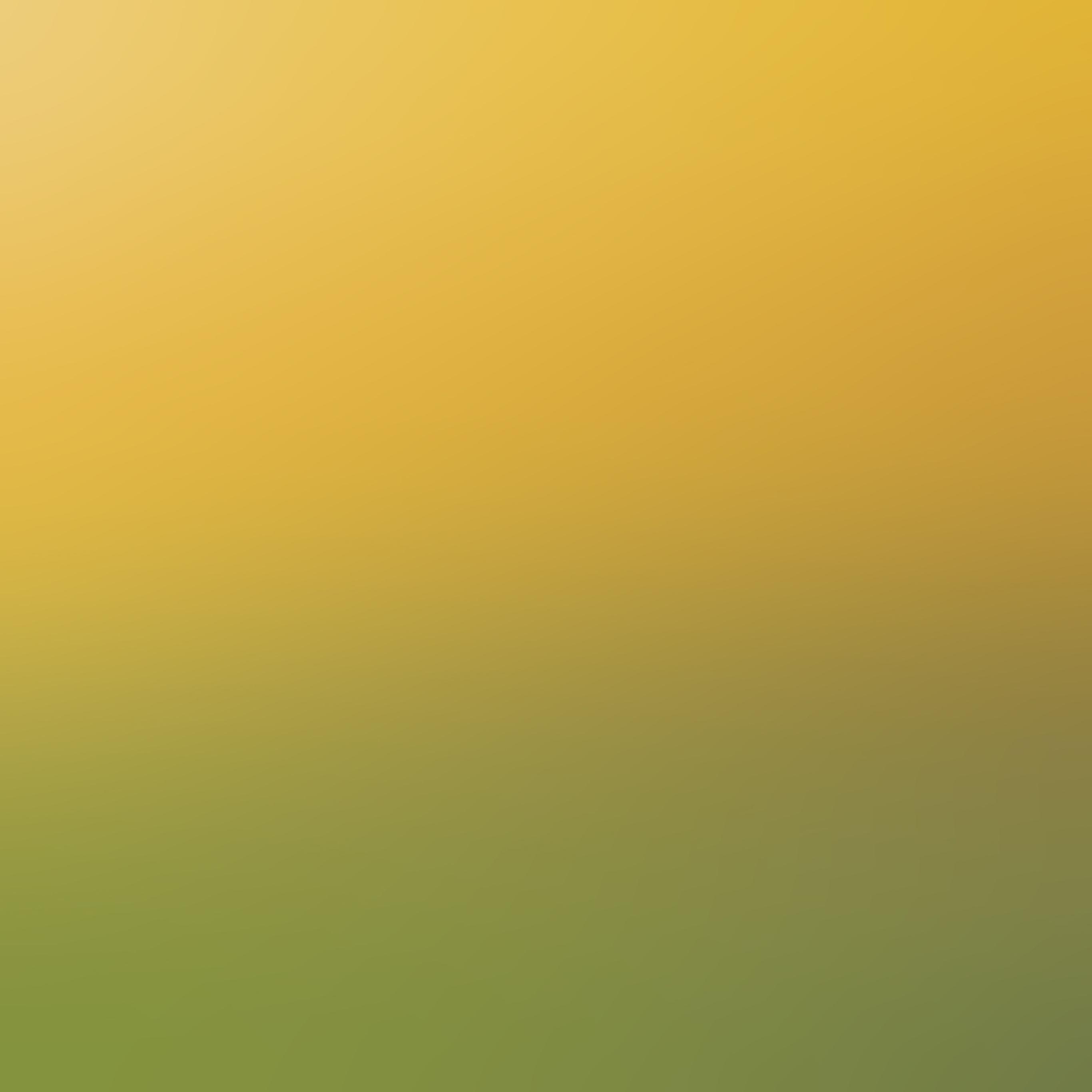 Backyard Baseball For Mac Download: Sc87-backyard-beauty-day-blur