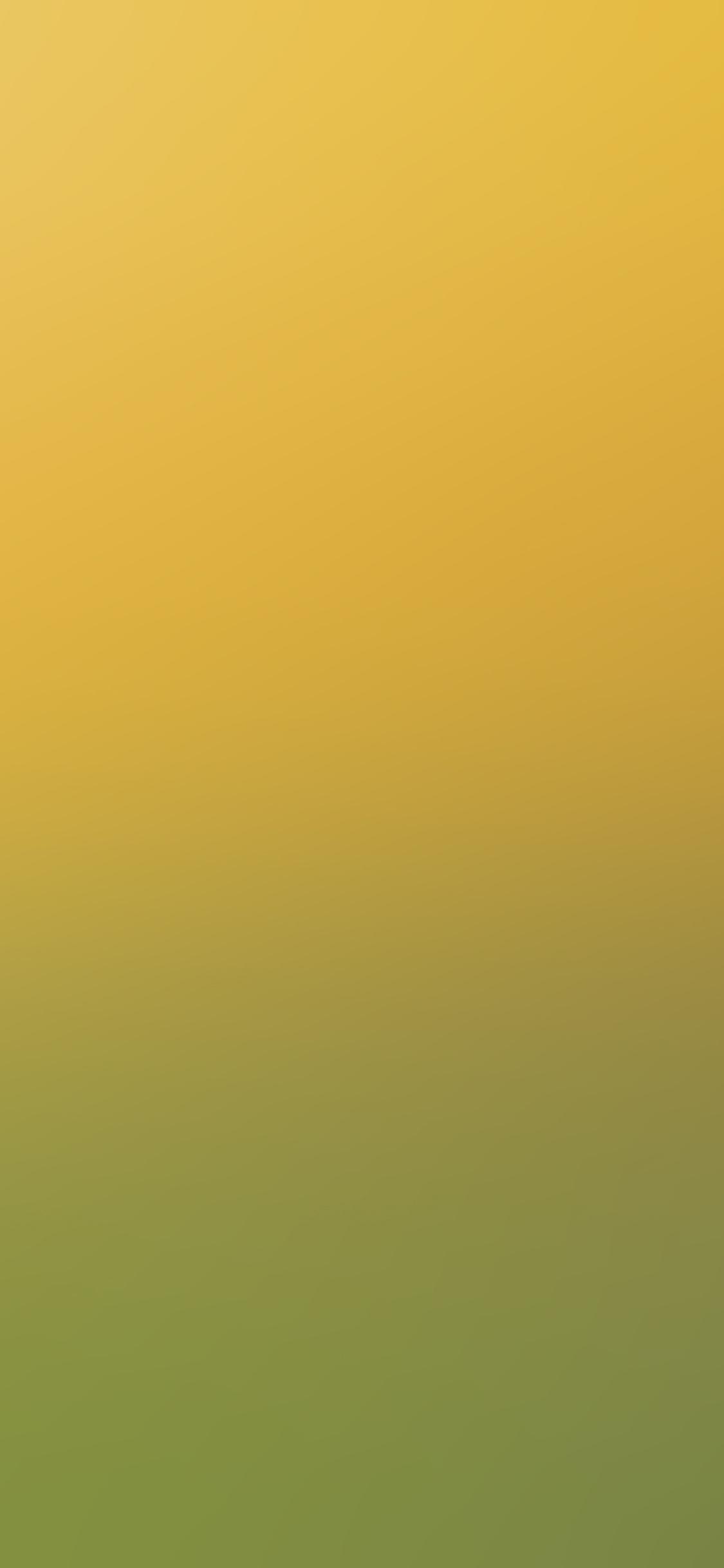 iPhoneXpapers.com-Apple-iPhone-wallpaper-sc87-backyard-beauty-day-blur