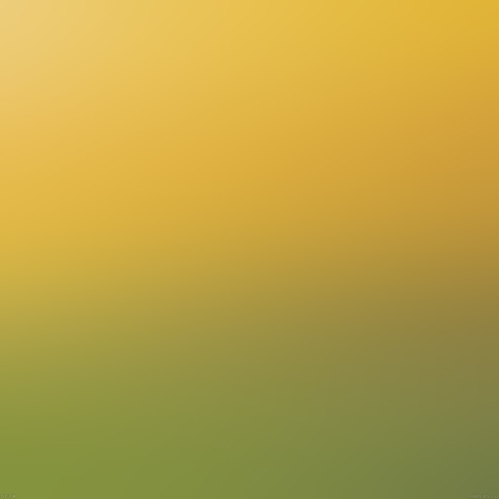 android-wallpaper-sc87-backyard-beauty-day-blur-wallpaper