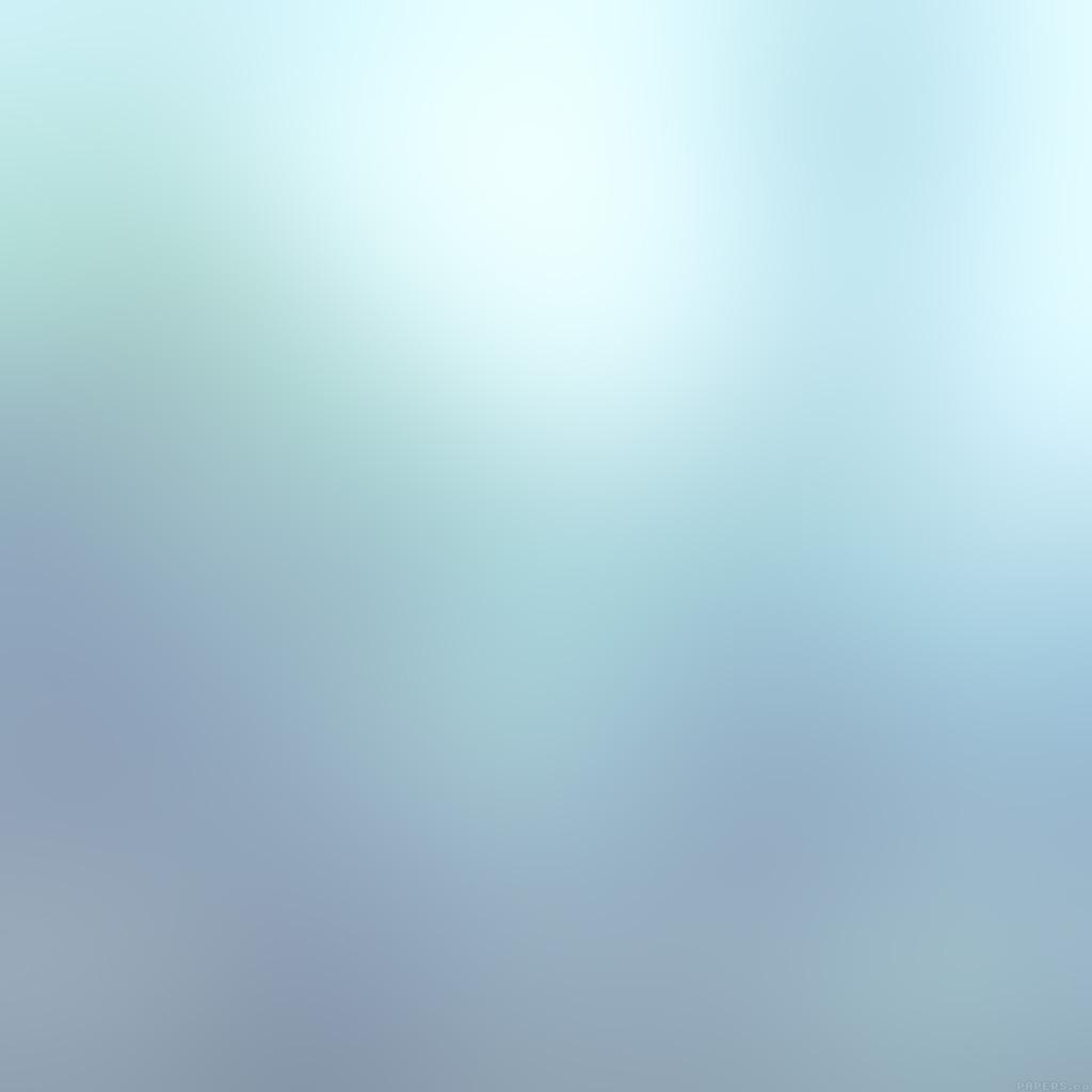android-wallpaper-sd34-snow-leopard-love-winter-gradation-blur-wallpaper