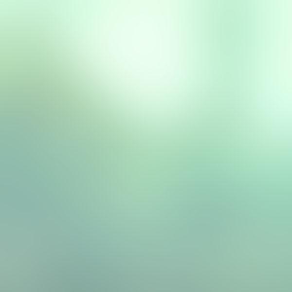 iPapers.co-Apple-iPhone-iPad-Macbook-iMac-wallpaper-sd35-green-olive-leaf-gradation-blur-wallpaper