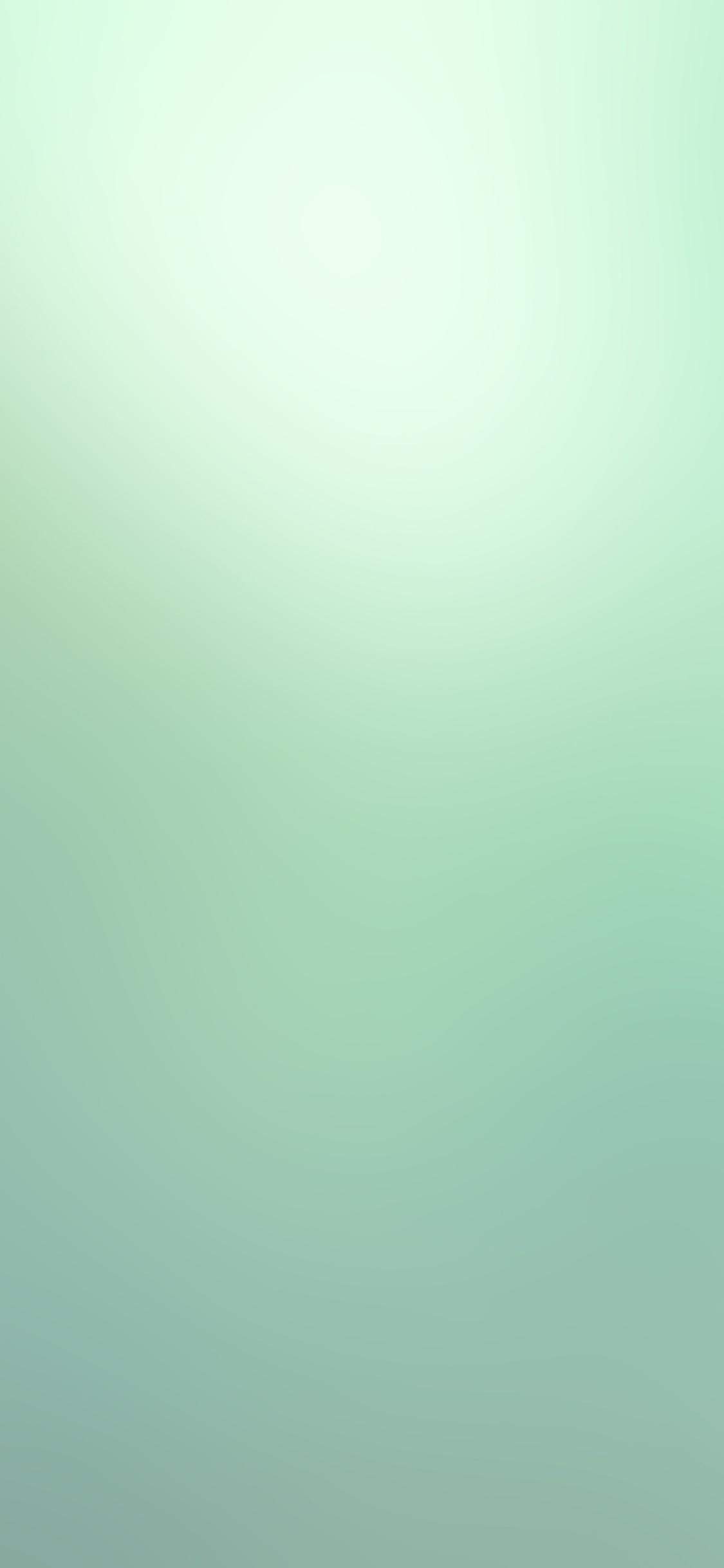 iPhoneXpapers.com-Apple-iPhone-wallpaper-sd35-green-olive-leaf-gradation-blur