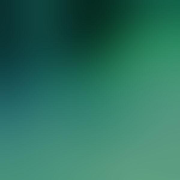 iPapers.co-Apple-iPhone-iPad-Macbook-iMac-wallpaper-sd37-papers-co-love-nature-gradation-blur-wallpaper