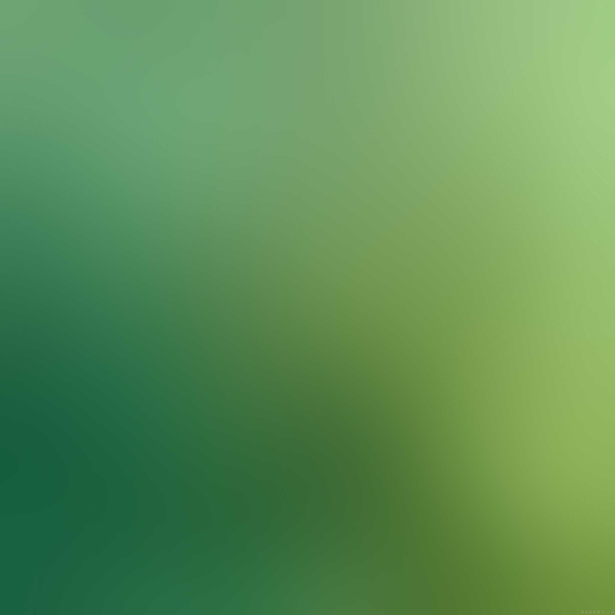 Wallpaper Iphone Peace And Love : FREEIOS7 sd67-green-peace-love-nature-gradation-blur - parallax HD iPhone iPad wallpaper
