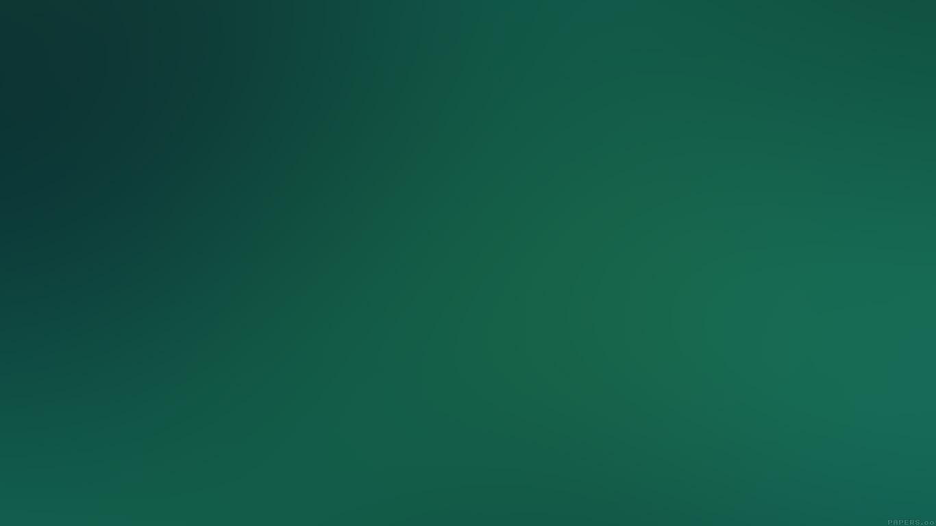 desktop-wallpaper-laptop-mac-macbook-airse64-night-forest-gradation-blur-wallpaper