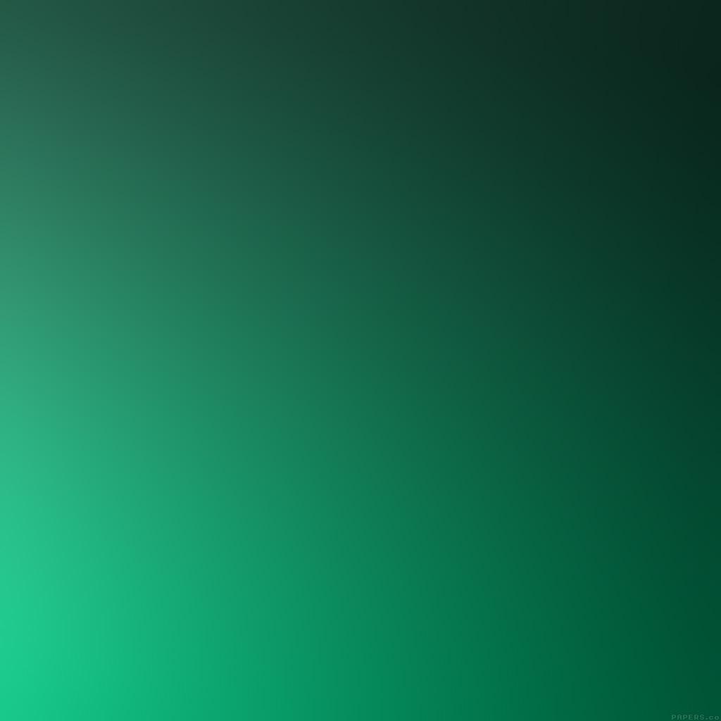 android-wallpaper-se99-green-grass-gradation-blur-wallpaper