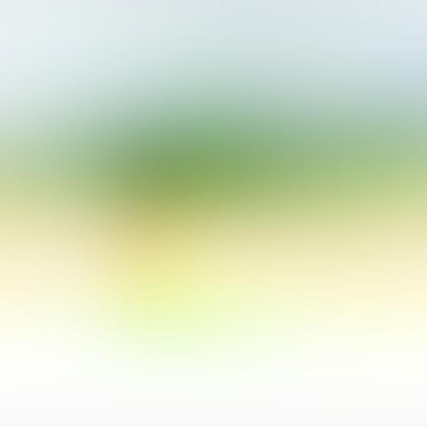 iPapers.co-Apple-iPhone-iPad-Macbook-iMac-wallpaper-sg58-green-light-gradation-blur-wallpaper