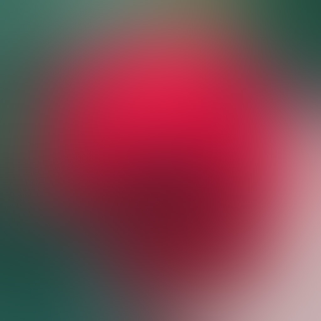 android-wallpaper-sh57-red-rose-drop-gradation-blur-wallpaper