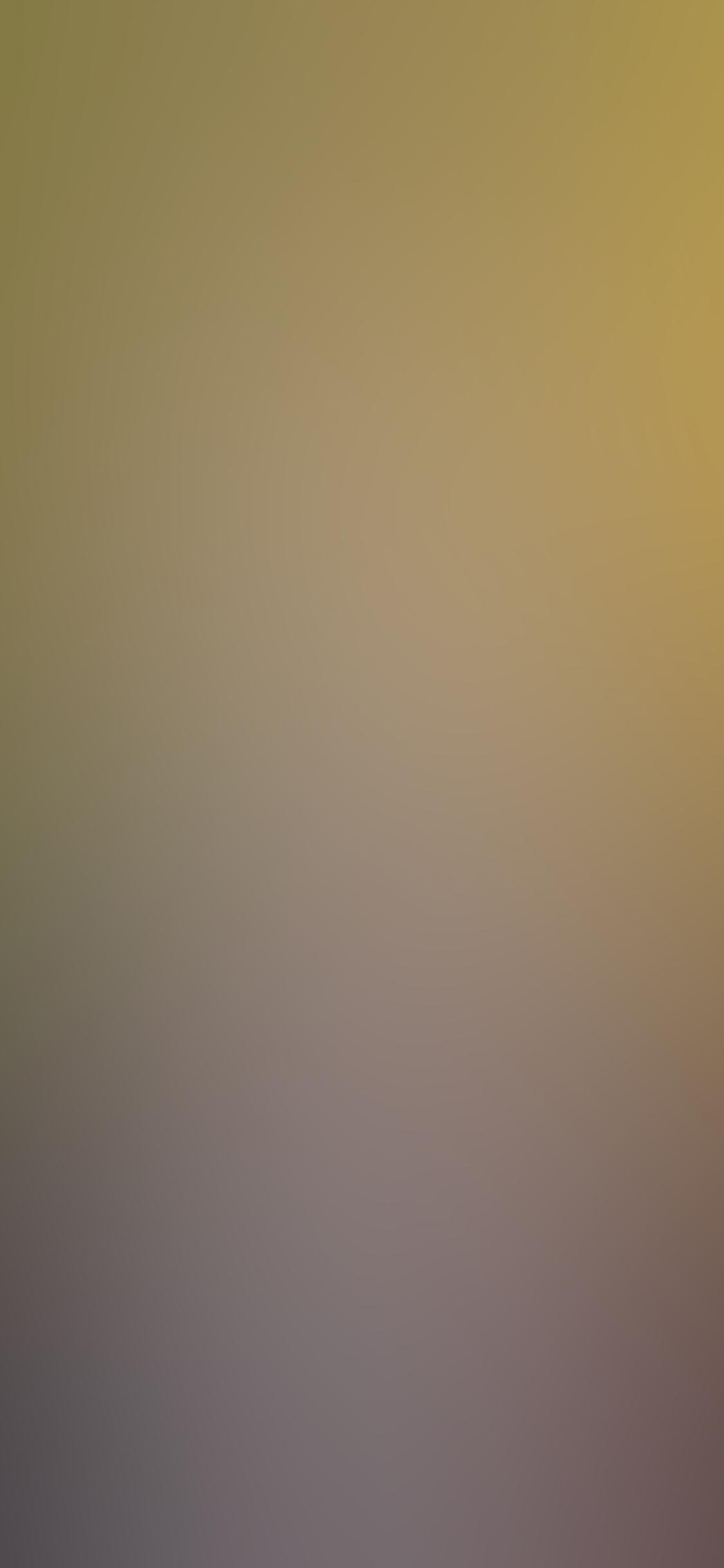 iPhoneXpapers.com-Apple-iPhone-wallpaper-si55-nature-light-gradation-blur