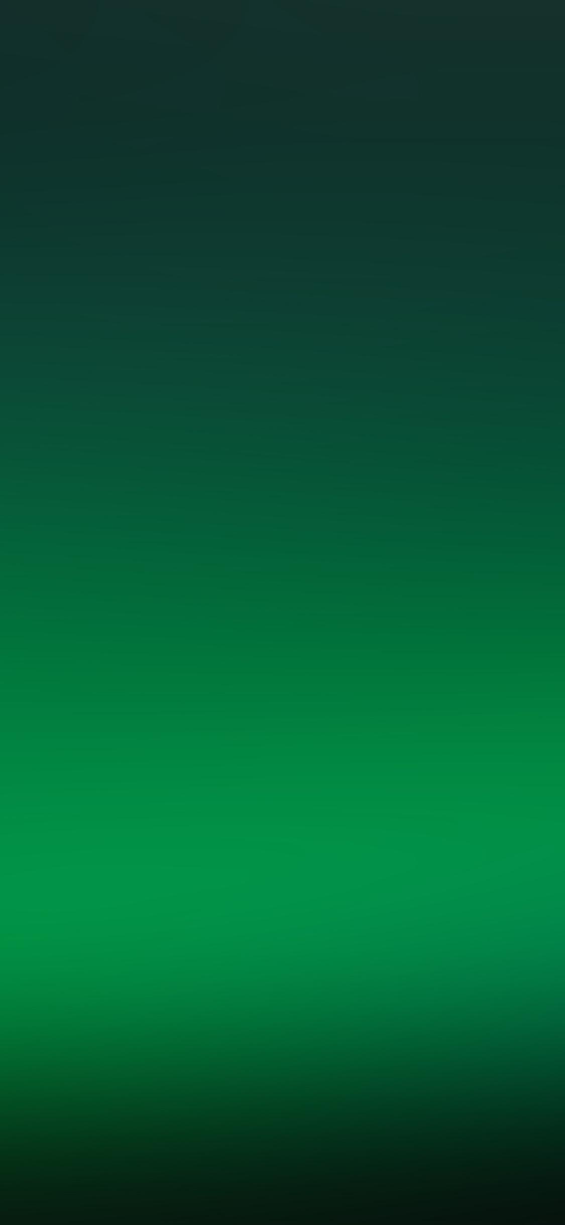 iPhoneXpapers.com-Apple-iPhone-wallpaper-sj22-clear-green-soft-glow-gradation-blur