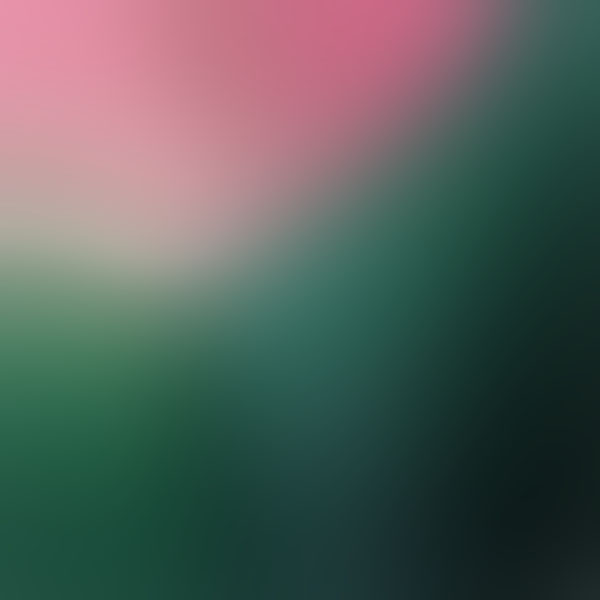 iPapers.co-Apple-iPhone-iPad-Macbook-iMac-wallpaper-sj49-traditional-red-green-art-gradation-blur-wallpaper