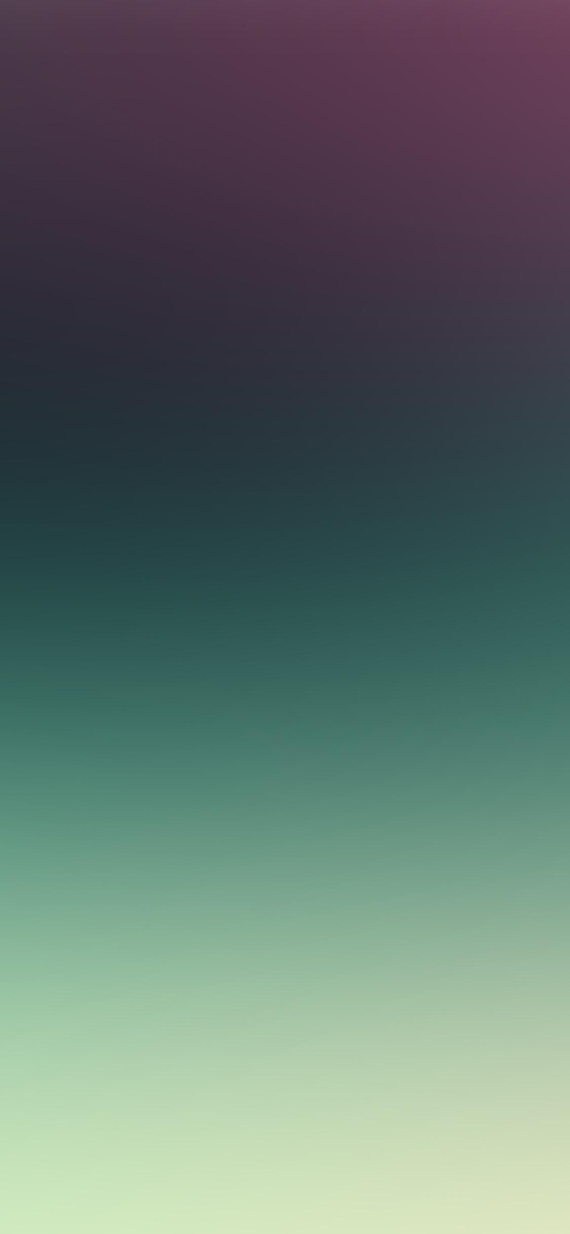 iPhoneXpapers.com-Apple-iPhone-wallpaper-sj81-purple-green-night-gradation-blur
