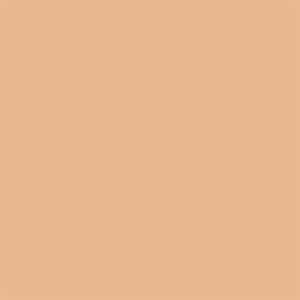 iPapers.co-Apple-iPhone-iPad-Macbook-iMac-wallpaper-sk44-flat-apricot-color-blur-gradation-wallpaper