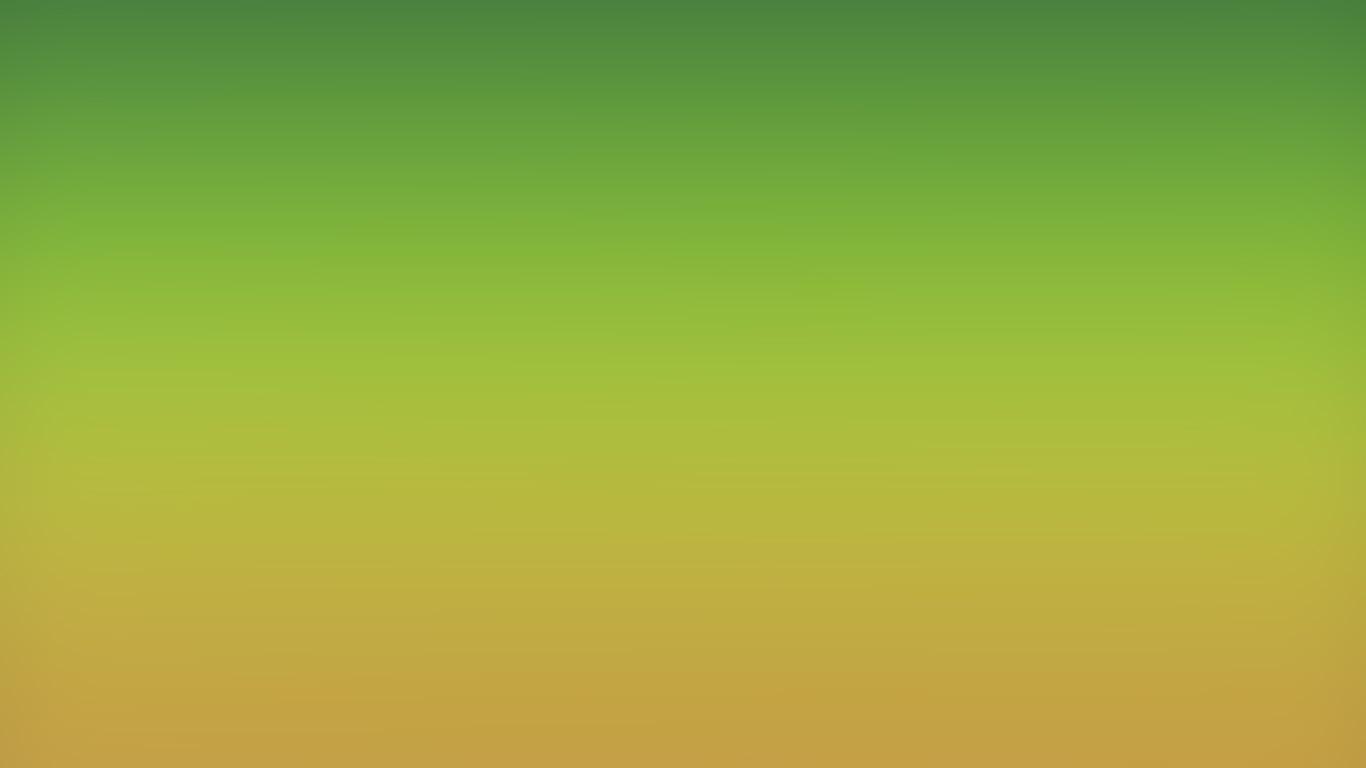 wallpaper-desktop-laptop-mac-macbook-sk99-orange-green-party-blur-gradation