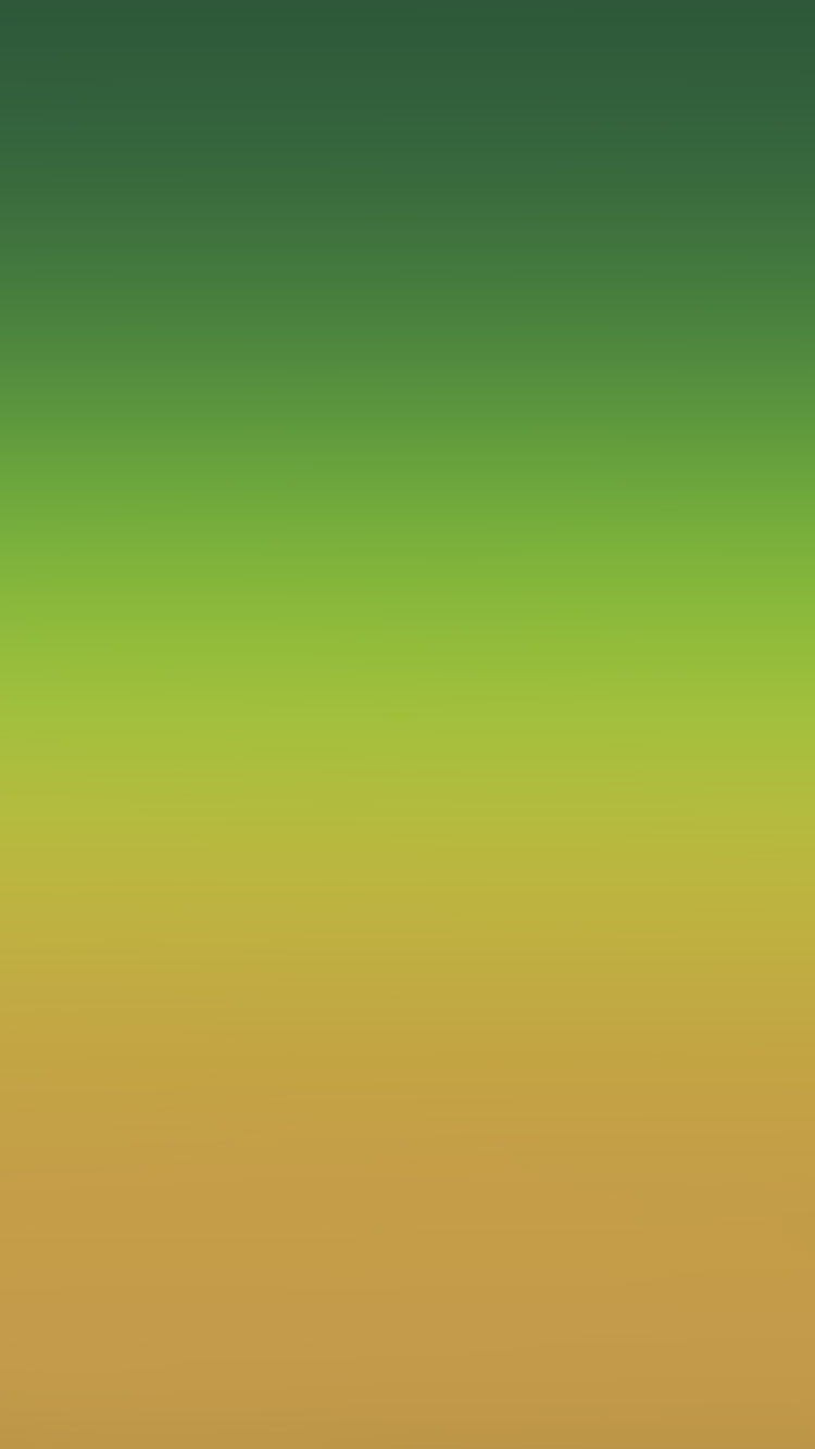 iPhone6papers.co-Apple-iPhone-6-iphone6-plus-wallpaper-sk99-orange-green-party-blur-gradation