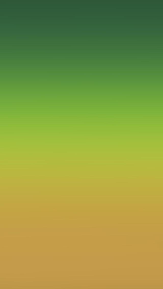 freeios8.com-iphone-4-5-6-plus-ipad-ios8-sk99-orange-green-party-blur-gradation