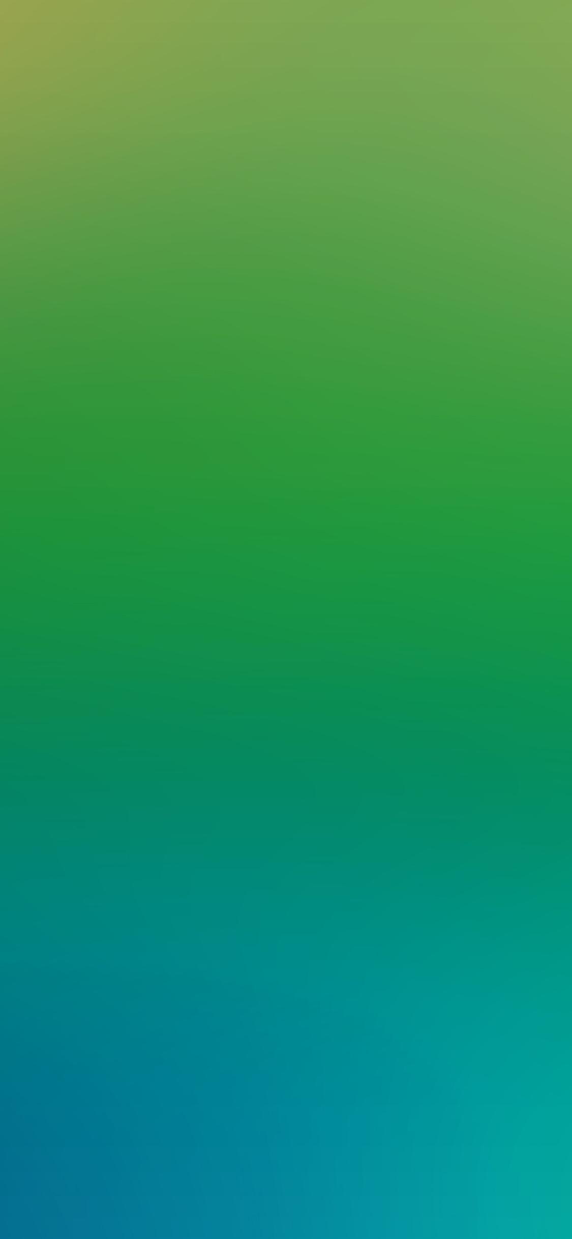 iPhoneXpapers.com-Apple-iPhone-wallpaper-sl09-soft-blue-green-wood-blur-gradation