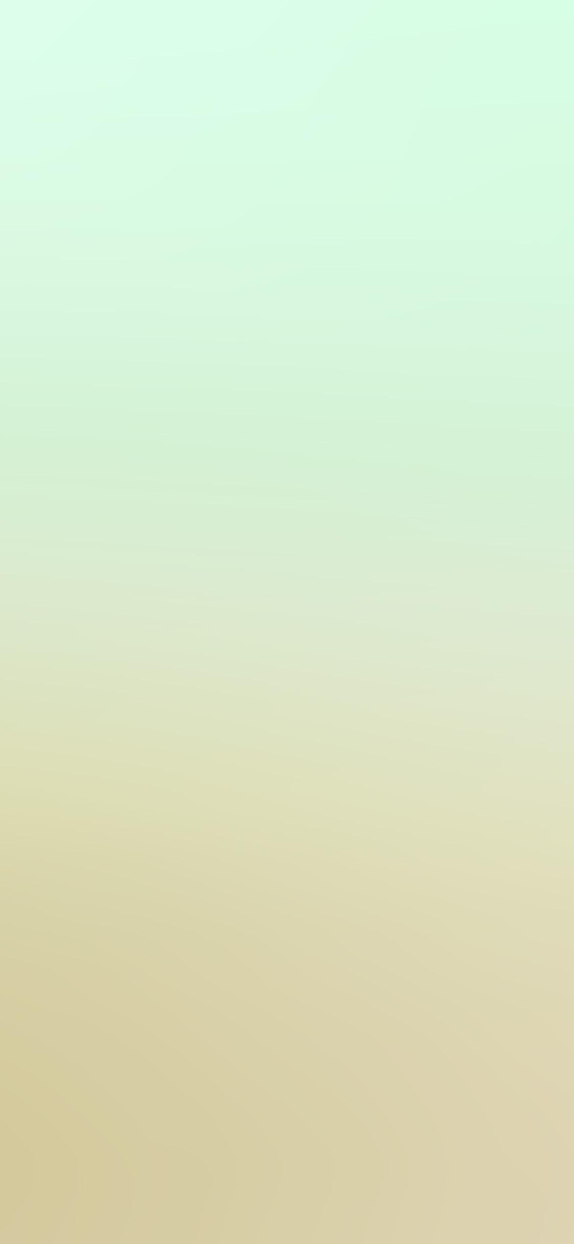 iPhonexpapers.com-Apple-iPhone-wallpaper-sm49-yellow-green-blur-gradation