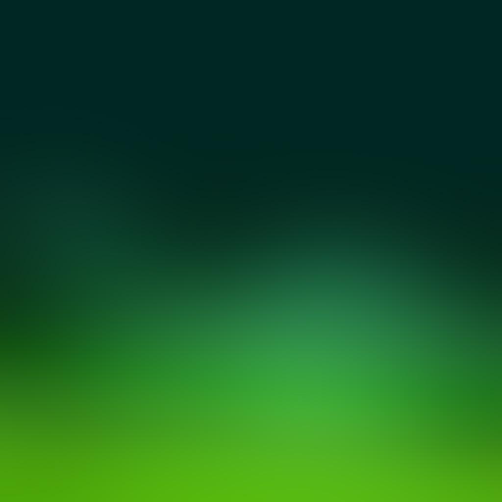wallpaper-sn38-green-blur-gradation-wallpaper