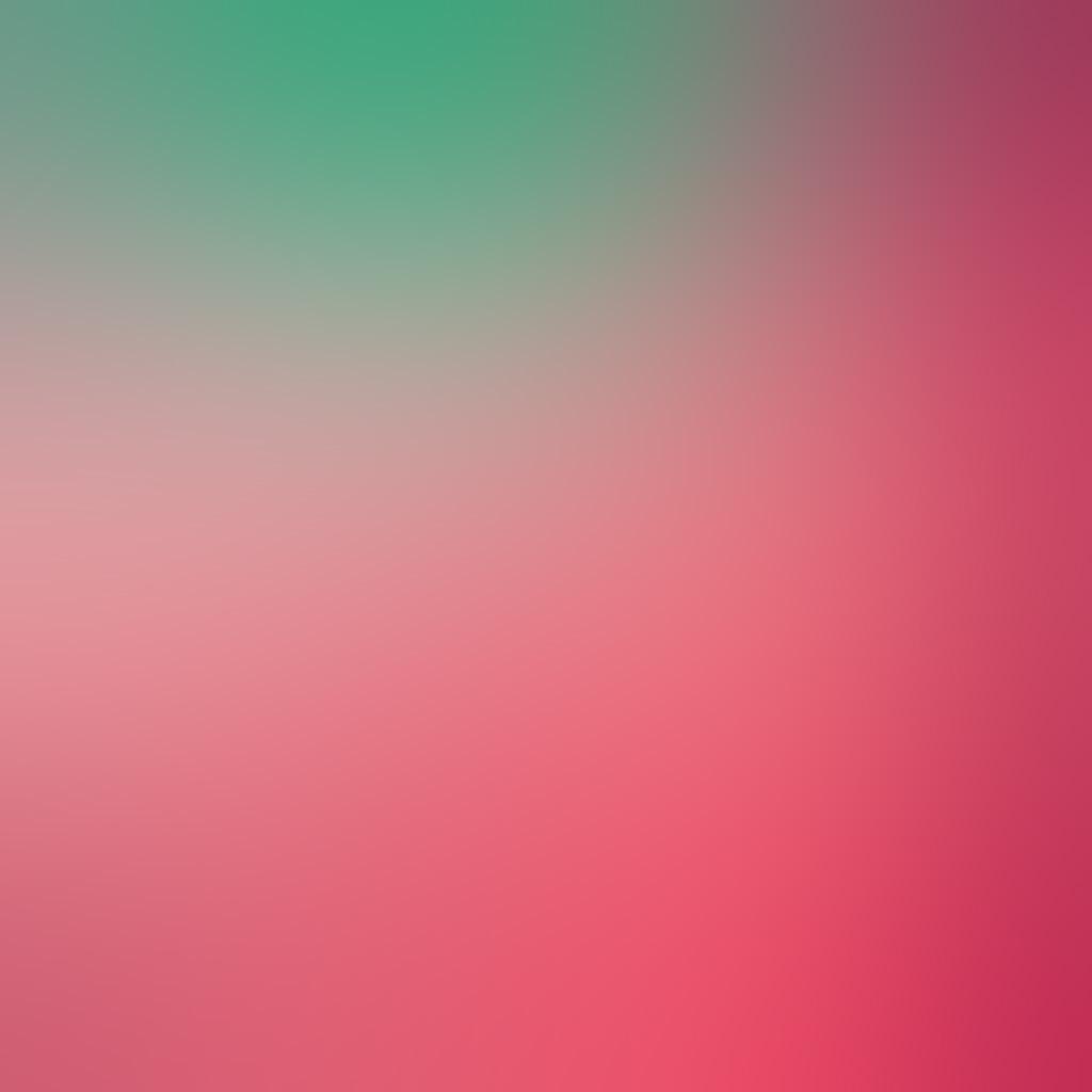 wallpaper-sn47-pink-green-dot-blur-gradation-wallpaper