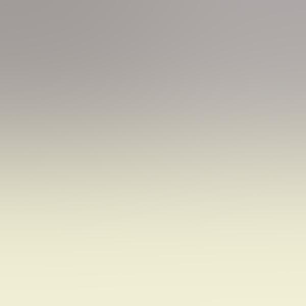 iPapers.co-Apple-iPhone-iPad-Macbook-iMac-wallpaper-sn94-gray-background-blur-gradation-wallpaper