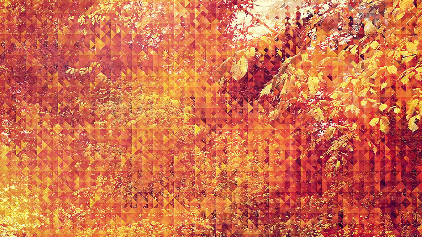 iPapers.co-Apple-iPhone-iPad-Macbook-iMac-wallpaper-va37-september-pattern