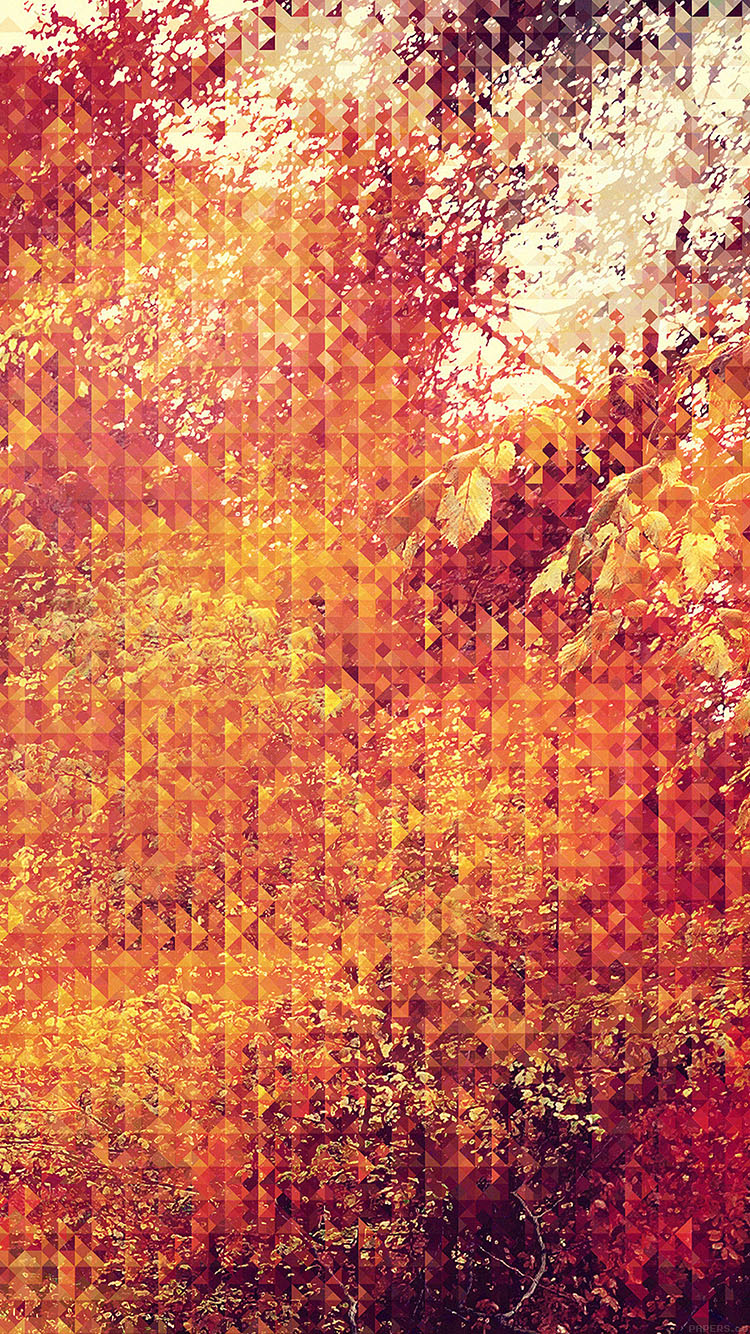 iPhonepapers.com-Apple-iPhone8-wallpaper-va37-september-pattern