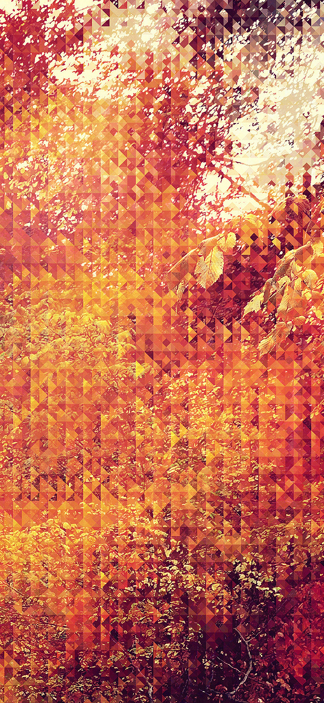 iPhoneXpapers.com-Apple-iPhone-wallpaper-va37-september-pattern